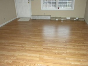 4025-moss-road-livingroom